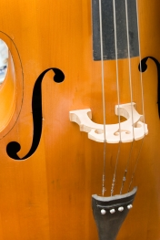 cellostrings